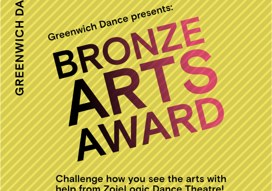 Bronze Award New